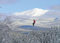 Bretton Woods Canopy Tour