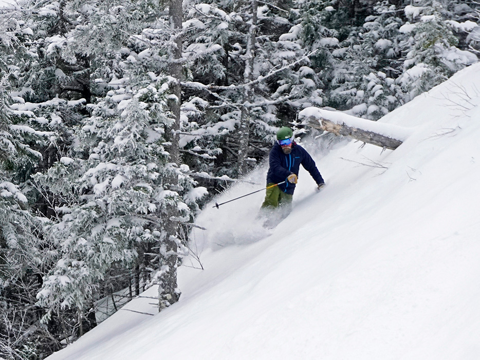 Bretton Woods has something for everyone...including steep, snowy trees!