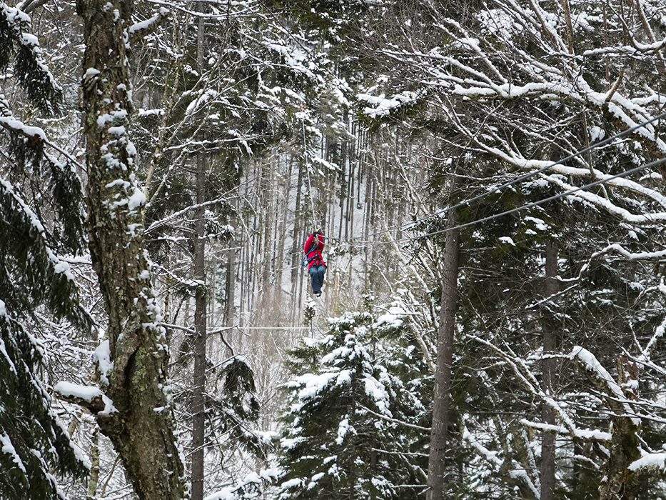 You sometimes fly among the trees during a Bretton Woods canopy tour!