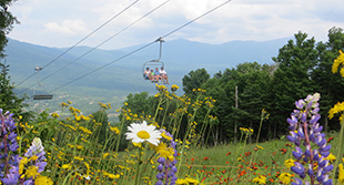 mtwash-omni-mount-washington-resort-summer-scenic-lift-ride