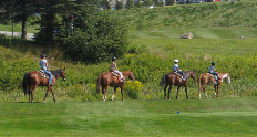 mtwash-omni-mount-washington-resort-summer-stables